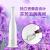 康佳(KONKA)加湿器オーフーティーエアコン室加湿器家庭用浄化恒湿静音运転アロマ加湿机置き場面両用花瓶版KZ-JSQ 7
